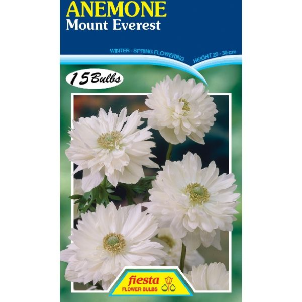 Anemone Mt Everest